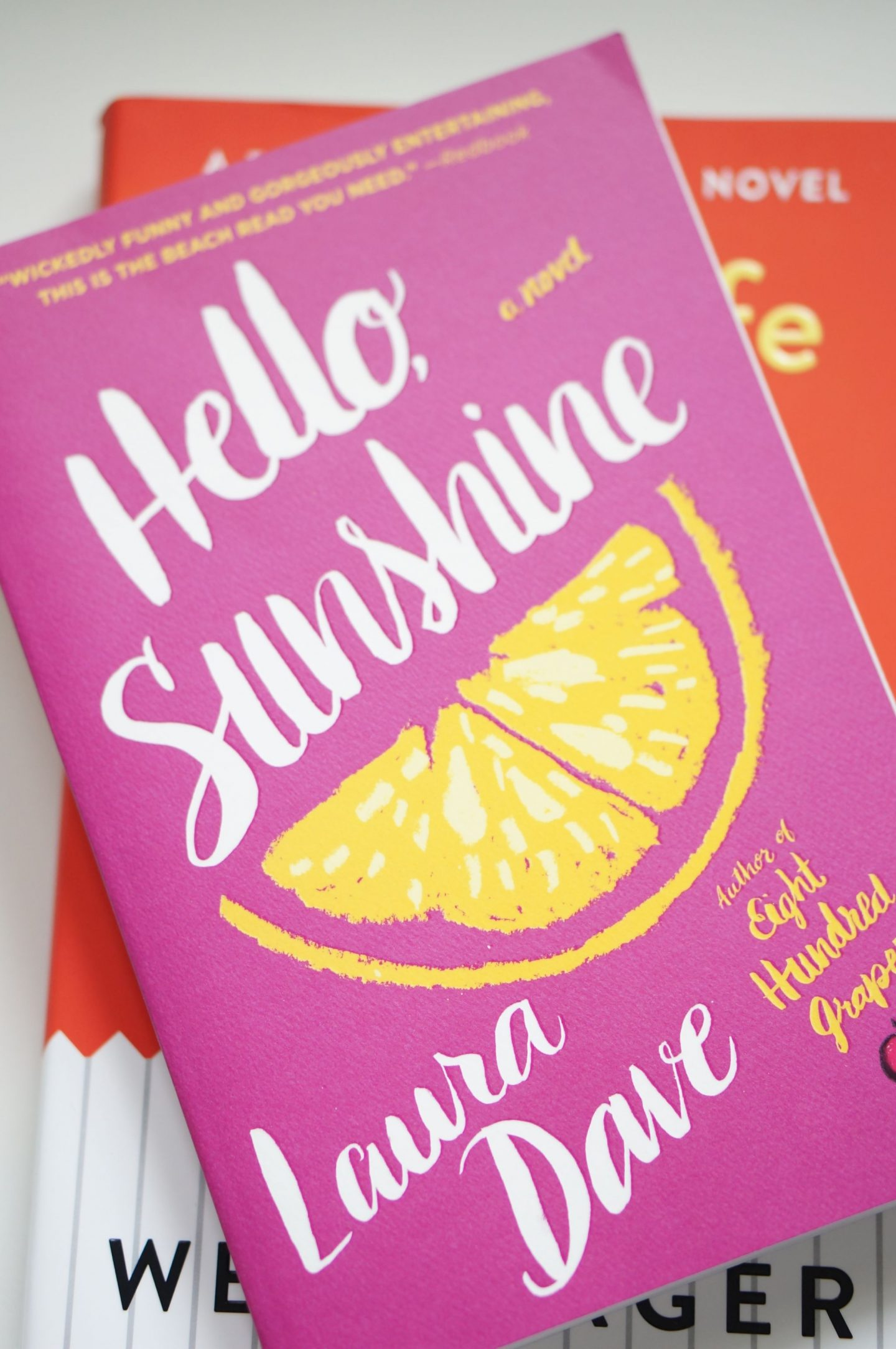 Popular North Carolina style blogger Rebecca Lately shares her review of Hello Sunshine by Laura Dave. If you love dramatic page-turners, read her review!