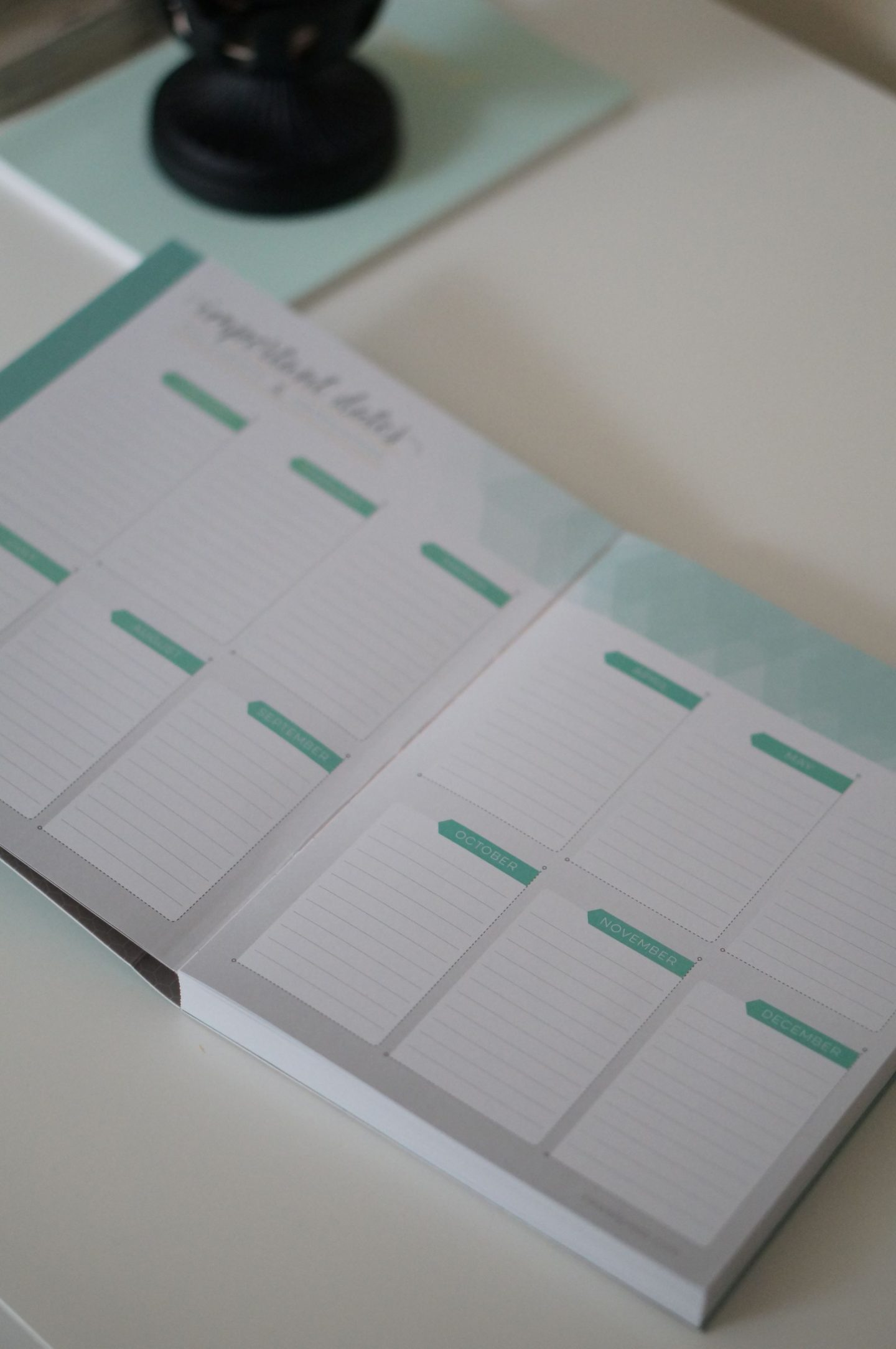 North Carolina blogger Rebecca Lately shares her 2019 Inkwell Press coil free planner. Check out her planner and how she's using it in 2019!