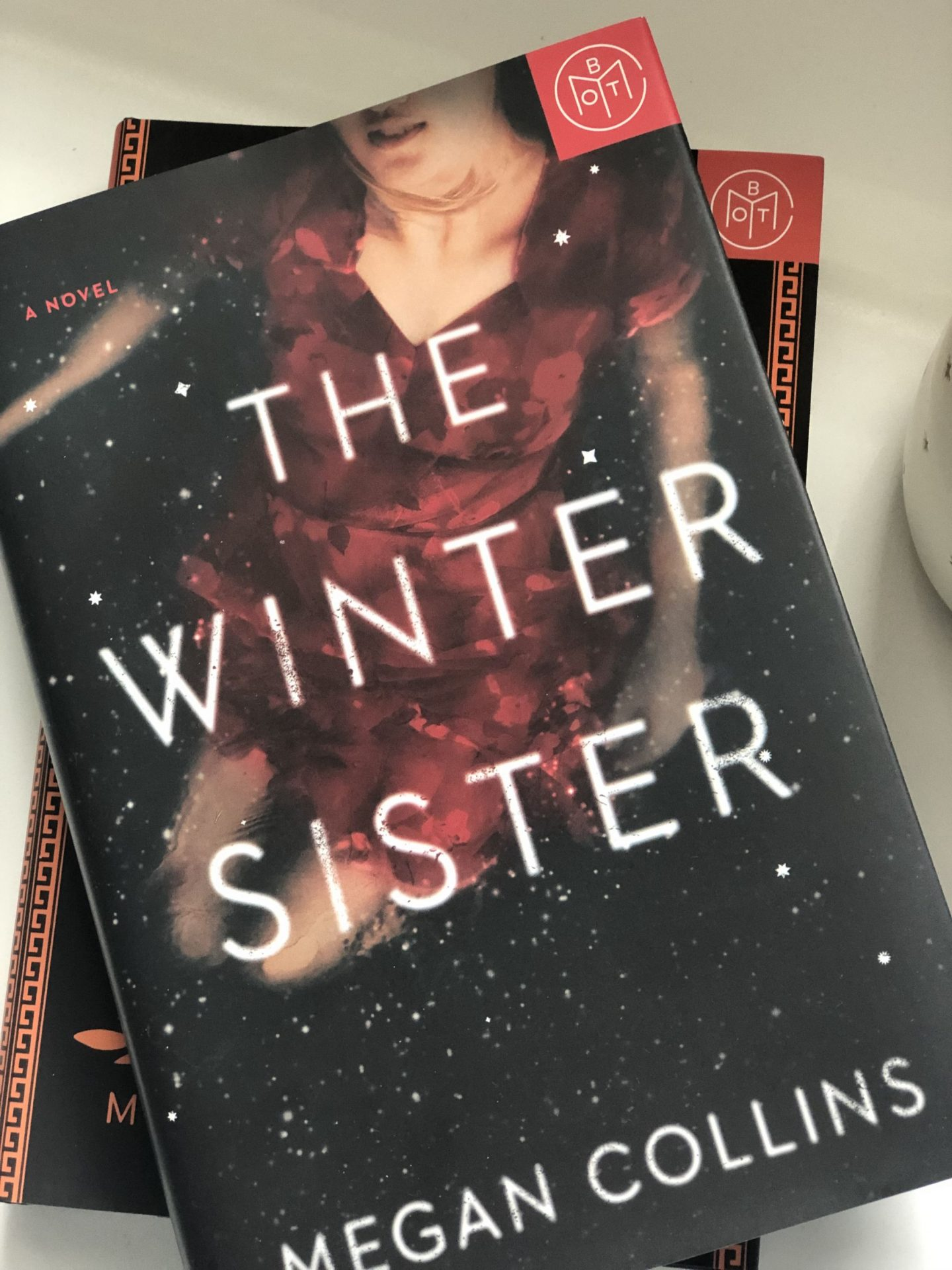 North Carolina blogger Rebecca Lately shares her picks for Book of the Month February 2019. Check it out to see what she got in her box this month!