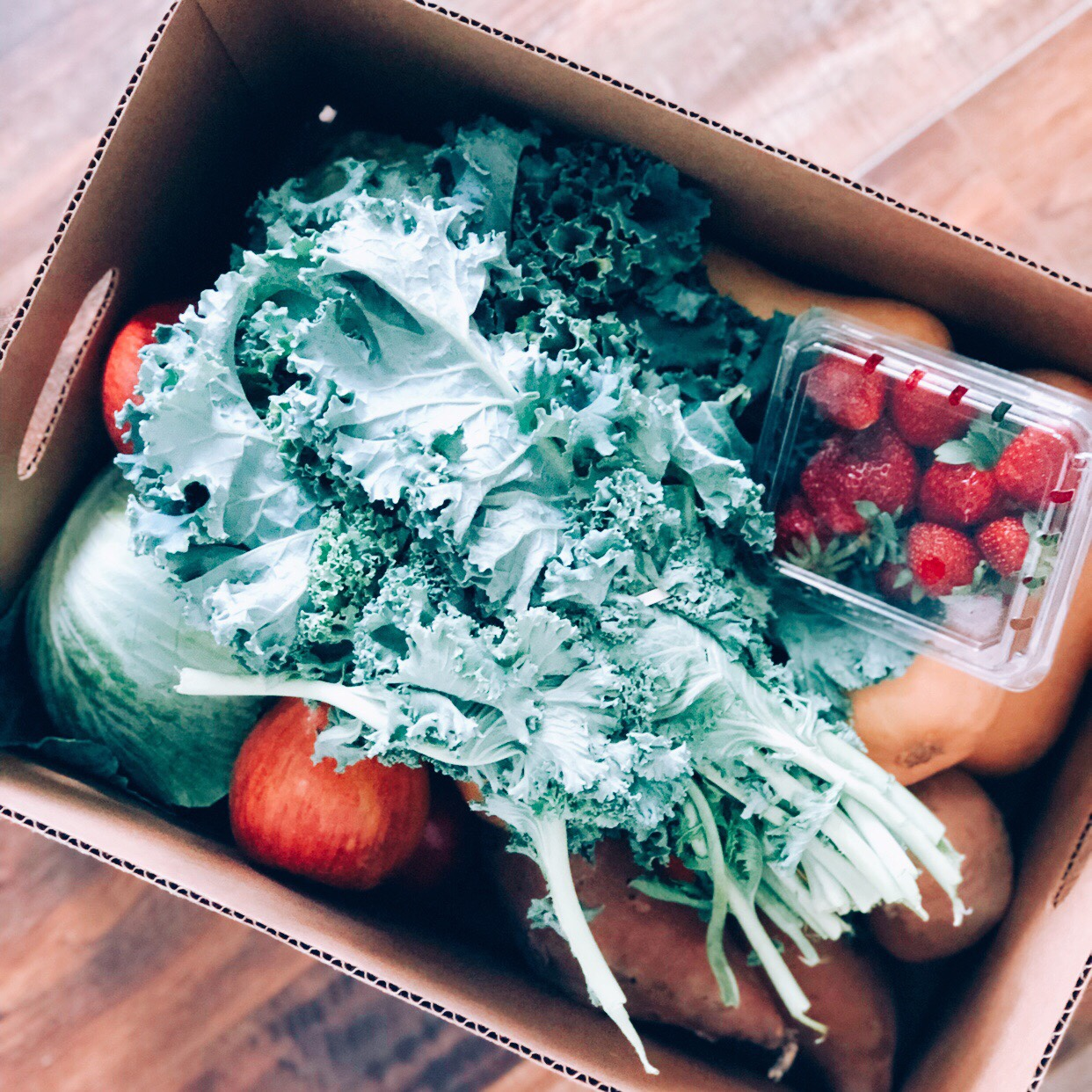 North Carolina blogger Rebecca Lately shares her first three CSA boxes and many CSA box recipe ideas for using up all your produce!