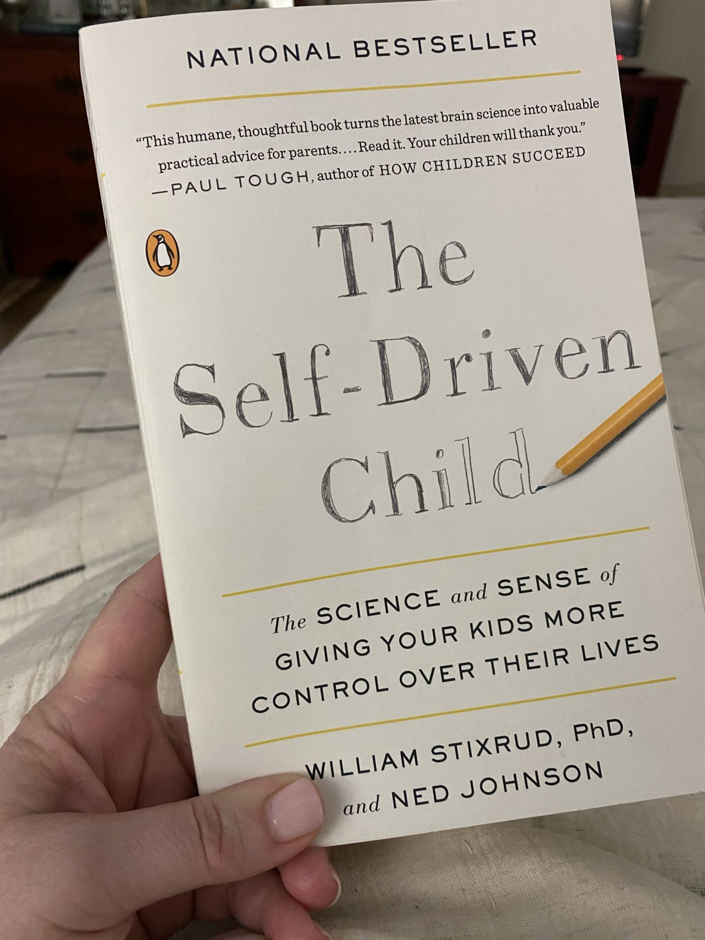 NC blogger Rebecca Lately shares her review of the latest book she's read, which is The Self-Driven Child by Stixrud and Johnson.